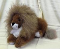 Lying Lion - Baby Alpaca