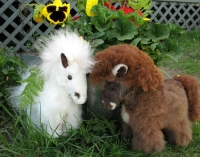 Horse/100% Baby Alpaca